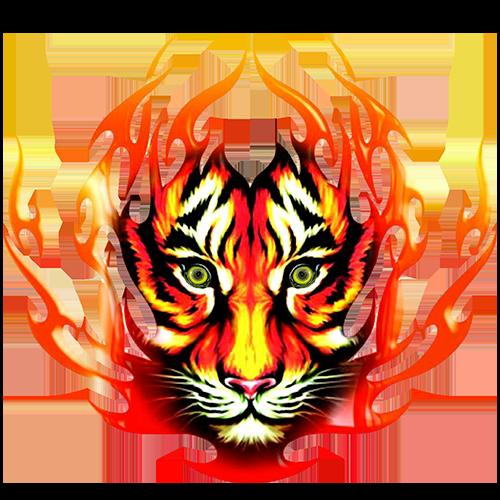 Tiger Night Club Phuket